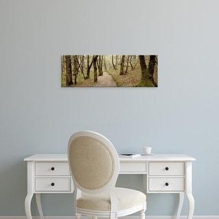 Easy Art Prints Alan Blaustein's 'Oak Tree #46' Premium Canvas Art