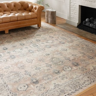 Alexander Home Venetian Printed Persian Distressed Rug