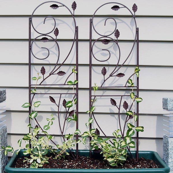 Outdoor Garden Plant Design Trellis for Growing Plants & Vegetables Set of 2
