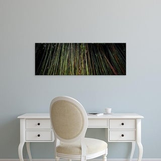 Easy Art Prints Panoramic Images's 'Bamboo HI' Premium Canvas Art