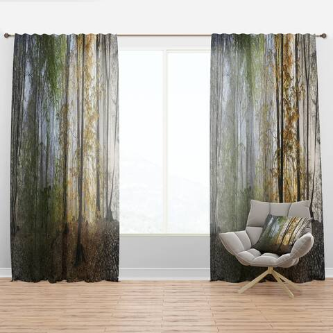 Designart 'Morning Forest Panoramic View' Landscape Photography Curtain Panel