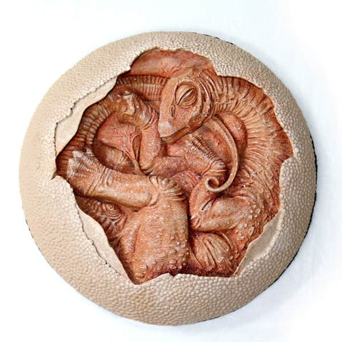 Titanosaur Embryo Resin Replica Dinorama - Multi