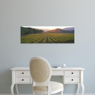Easy Art Prints Panoramic Images's 'Sunset, Vineyard, Napa Valley, California, USA' Premium Canvas Art