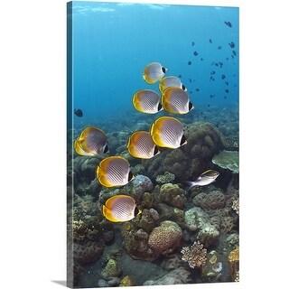 Premium Thick-Wrap Canvas entitled Bali, Indonesia
