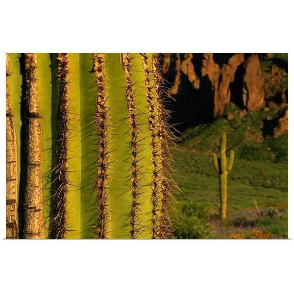 """Saguaro cactus, Superstition Mountains, Arizona"" Poster Print"