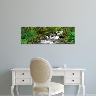 Easy Art Prints Panoramic Images's 'Olympic National Park, Washington State, USA' Premium Canvas Art