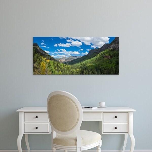 Easy Art Prints Panoramic Image 'Trees, Country Road 361, Camp Bird Road, San Juan Mountains, Colorado' Canvas Art