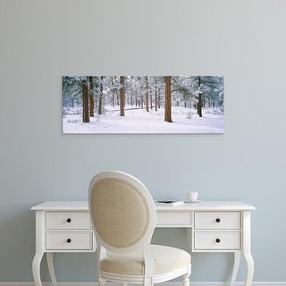 Easy Art Prints Panoramic Image 'Snow covered trees in a forest, Grand Canyon National Park, Arizona, USA' Canvas Art