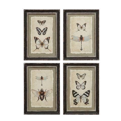 """Wood Framed Vintage Insect Prints (Set of 4 Designs) - 9.5"""" x 13.5"""""""