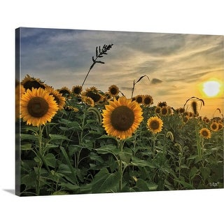 """""""Midwest Livin' I"""" Canvas Wall Art"""