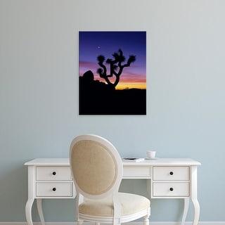 Easy Art Prints Jerry Ginsberg's 'Joshua Tree Night' Premium Canvas Art
