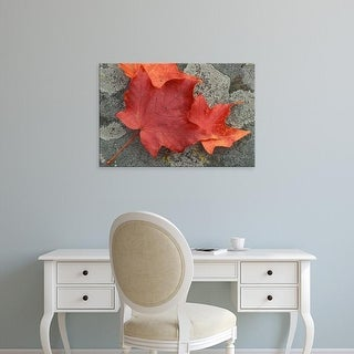 Easy Art Prints Jerry & Marcy Monkman's 'Nh Sugar Maple Leaves In Fall' Premium Canvas Art