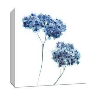 "PTM Images 9-147543  PTM Canvas Collection 12"" x 12"" - ""Gorgeous Blue III"" Giclee Flowers Art Print on Canvas"