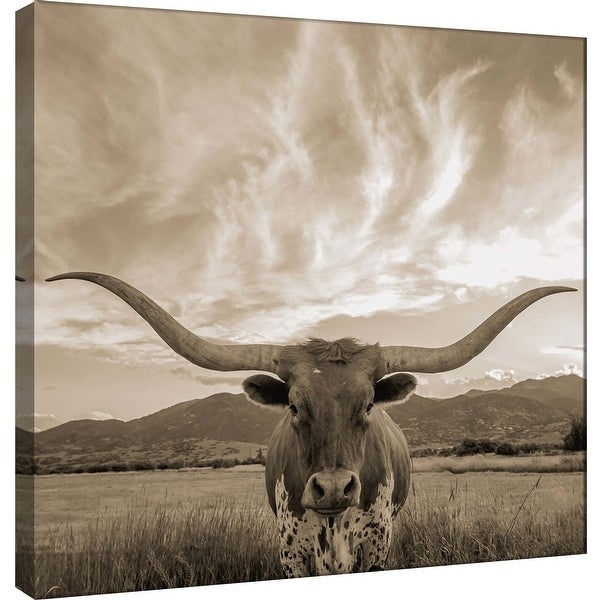 "PTM Images 9-101036 PTM Canvas Collection 12"" x 12"" - ""Longhorn"" Giclee Bulls Art Print on Canvas"