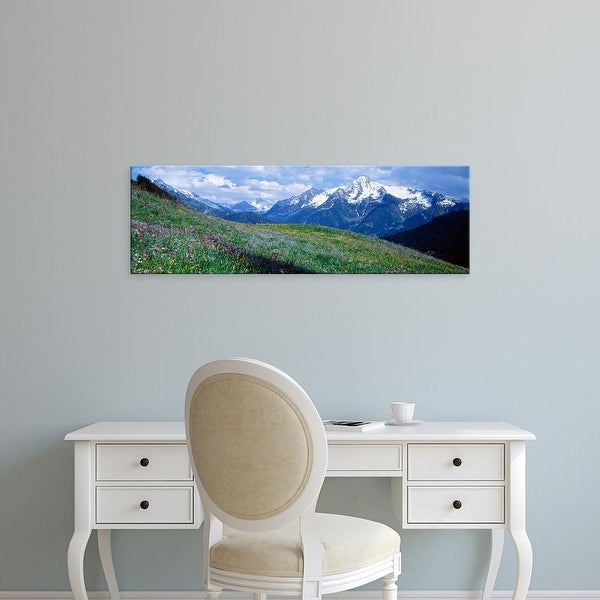 Easy Art Prints Panoramic Images's 'Wildflowers Along Mountainside, Zillertaler, Austria' Premium Canvas Art