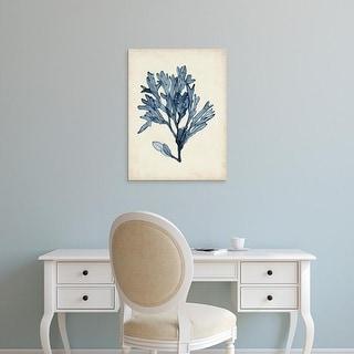 Easy Art Prints Naomi McCavitt's 'Seaweed Specimens II' Premium Canvas Art