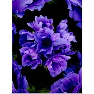 """Purple flowers on black background"" Poster Print"