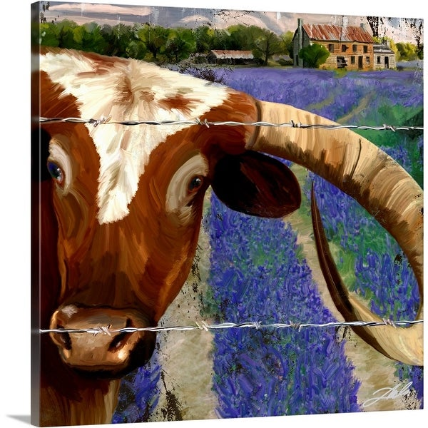 """Texas BB II"" Canvas Wall Art"