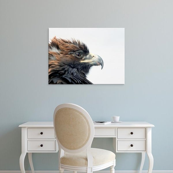 Easy Art Prints Amos Nachoum's 'Golden Eagle Festival' Premium Canvas Art