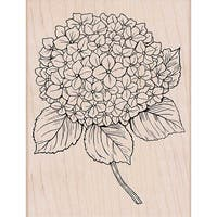 "Hero Arts Mounted Rubber Stamp 5.75""X4.5""-Large Hydrangea"