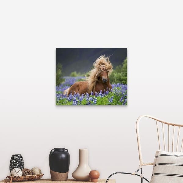 Purebred Icelandic Horse In The Summertime With Blooming Lupines Iceland Canvas Wall Art Overstock 16893223