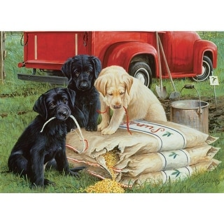 Willow Creek Press WC39781 Just Dogs Puzzle