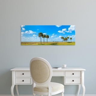 Easy Art Prints Panoramic Images's 'Trees on landscape, Florida, USA' Premium Canvas Art