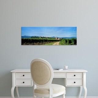 Easy Art Prints Panoramic Images's 'Vineyard, Alsace, France' Premium Canvas Art