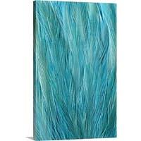 Premium Thick-Wrap Canvas entitled Blue Feathers - Multi-color