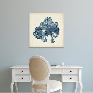 Easy Art Prints Naomi McCavitt's 'Seaweed Specimens IX' Premium Canvas Art