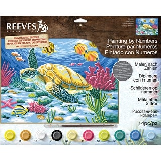 """Paint By Number Kit 12""""X16""""-Sea Turtle"""