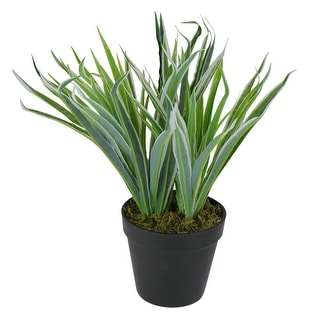 "13"" Two Tone Green and White Artificial Grass Potted Plant - N/A"