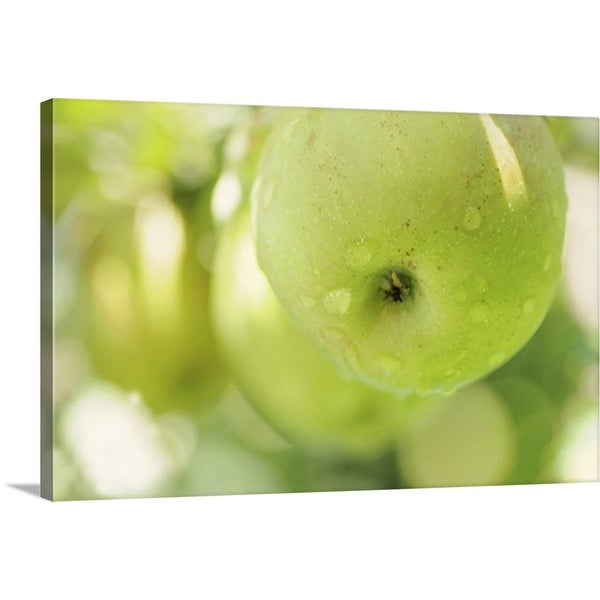 """Green apples"" Canvas Wall Art"