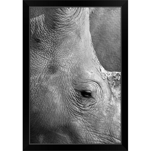 """White rhino close up"" Black Framed Print"