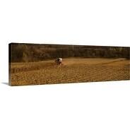 Premium Thick-Wrap Canvas entitled Harvest IL