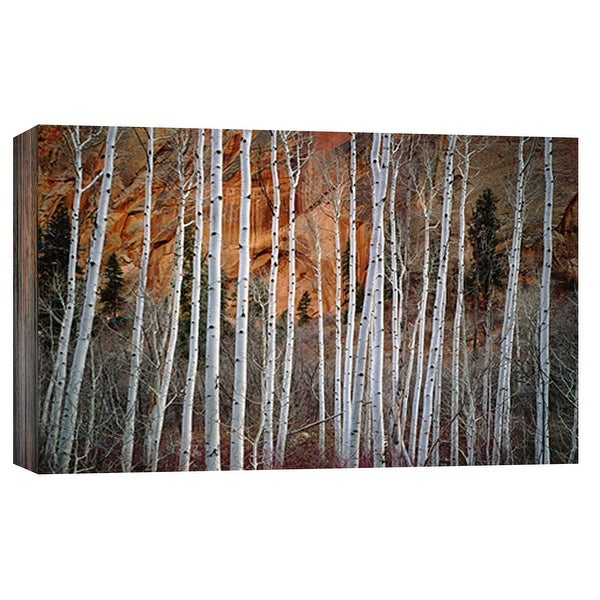 """PTM Images 9-101945 PTM Canvas Collection 8"""" x 10"""" - """"Betatikin Aspen"""" Giclee Forests Art Print on Canvas"""