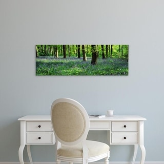 Easy Art Prints Panoramic Images's 'Bluebells in a forest, Micheldever Wood, Hampshire, England' Premium Canvas Art
