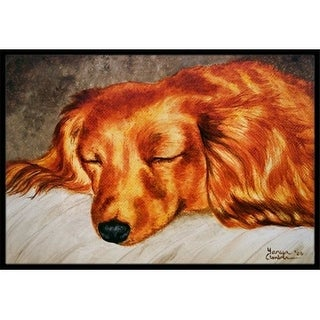 Carolines Treasures AMB1202JMAT Red Longhaired Dachshund Indoor or Outdoor Mat 24 x 36