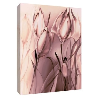 """PTM Images 9-148426  PTM Canvas Collection 10"""" x 8"""" - """"Blush Tulip I"""" Giclee Flowers Art Print on Canvas"""