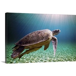 """Sun beams filtering through sea with green sea turtle."" Canvas Wall Art"