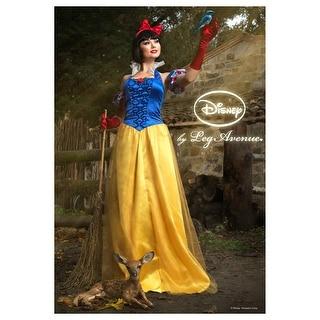 Womens Disney Princess Snow White Costume