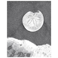 ''Sand Dollar and Surf'' by Anon Coastal Art Print (14.5 x 11.5 in.)