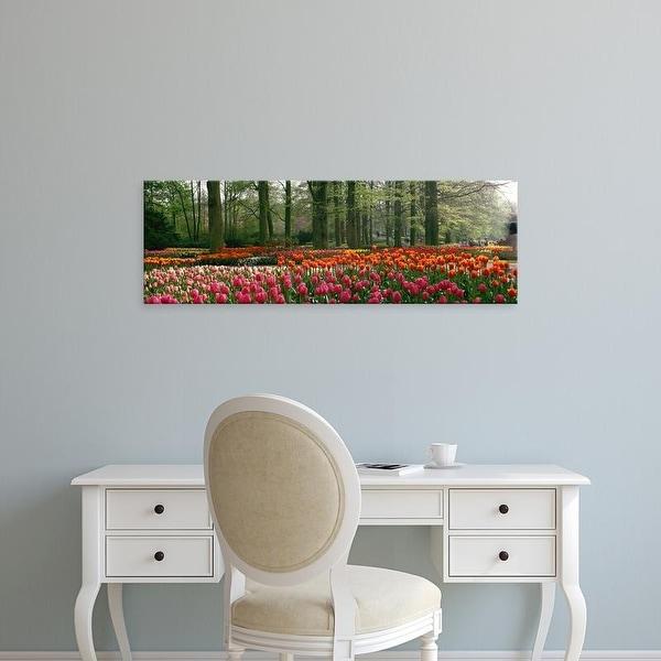 Easy Art Prints Panoramic Images's 'Keukenhof Garden, Lisse, The Netherlands' Premium Canvas Art