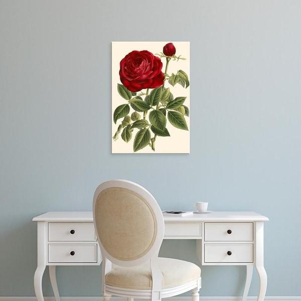 Easy Art Prints VanHoutte's 'Magnificent Rose IV' Premium Canvas Art