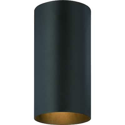 Volume Lighting 1-Light Black Outdoor Cylinder Flush Mount