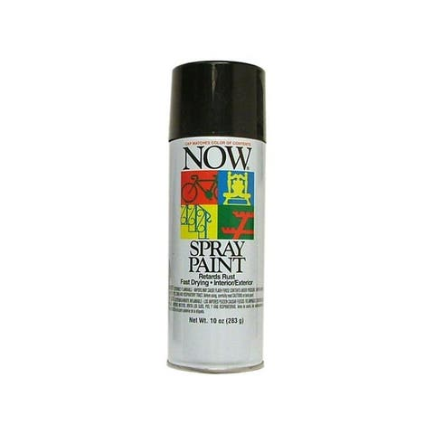 21-213 krylon now spray paint 9oz gloss black