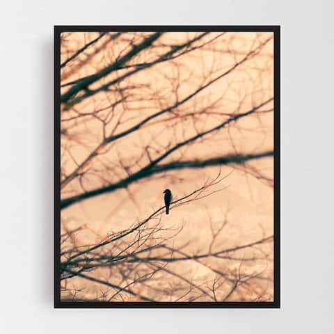 Animals Bird Birds Plant Sunrise Sunset Framed Wall Art Print