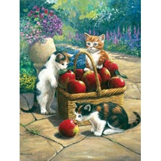 """Bumper Crop - Junior Small Paint By Number Kit 8.75""""X11.75"""""""