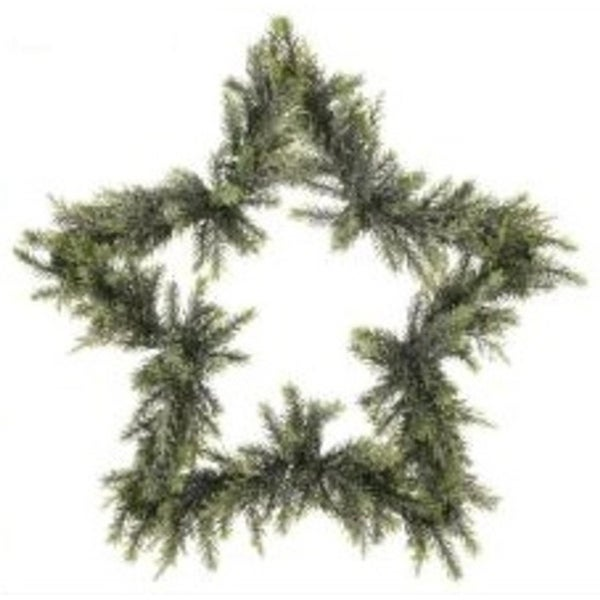 "24"" Mixed Green Iced Star Artificial Christmas Wreath"
