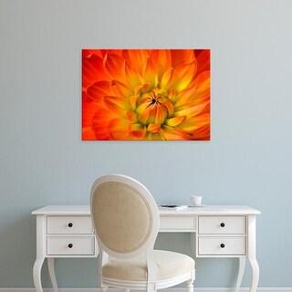 Easy Art Prints Darrell Gulin's 'Dahlia Flower With The Petals Radiating Outward Iii' Premium Canvas Art